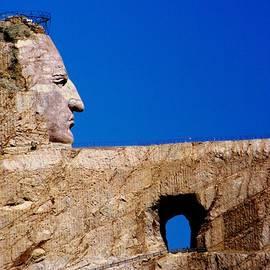 Karen Wiles - Crazy Horse