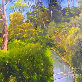 Pamela  Meredith - Creek in the Bush