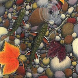 Daniel Lindvig - Creekbed Brookies
