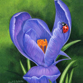 Sarah Batalka - Crocus And Ladybug