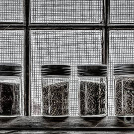 Brad Allen Fine Art Photography - Crop Samples