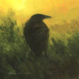 David Ladmore - Crow 5