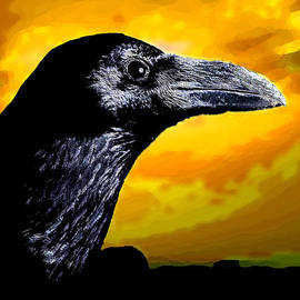 Bruce Iorio - Crow