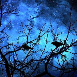 Christina Shaskus - Crows Attempted Murder Blue Skies