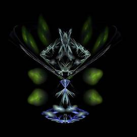 Bruce Nutting - Crystal