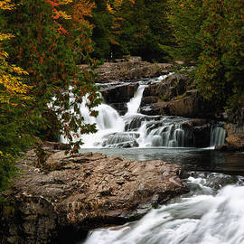Dawna  Moore Photography - Fall Foliage Crystal Falls Crystal New Hampshire