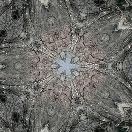 PainterArtist FIN - Crystal Mind