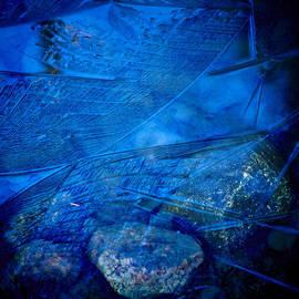Jouko Lehto - Cubistic nature