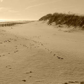 Kimberly Perry - Cupsogue Beach in Sepia