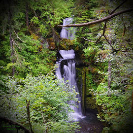 Ansel Price - Curley Creek Falls