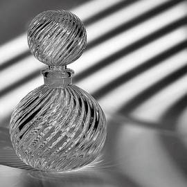 Tom Druin - Curvatures 2...black And White
