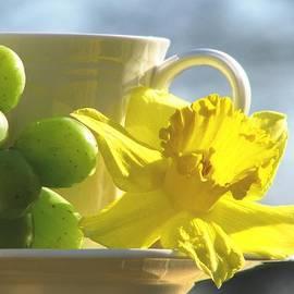 Angela Davies - Daffodil Dreams