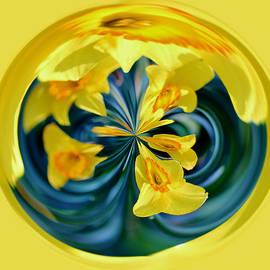 Cynthia Guinn - Daffodil Orb