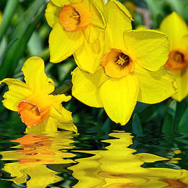 Kaye Menner - Daffodils by the Lake