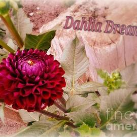 Cindy McClung - Dahlia Dreams