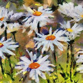 Gene Healy - Daisies