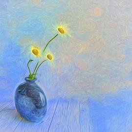 Veikko Suikkanen - Daisies