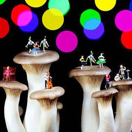 Paul Ge - Dancing on mushroom under starry night
