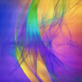 Susan Maxwell Schmidt - Dancing with Veils