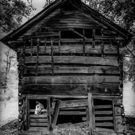 Karen Wiles - Daniel Boone Cabin