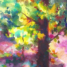 Talya Johnson - Dappled - light through tree canopy