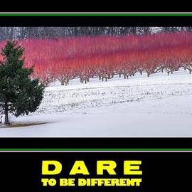 Michael Mazaika - Dare To Be Different - Poster No. 1