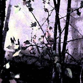 Eric Forster - Dark Corner
