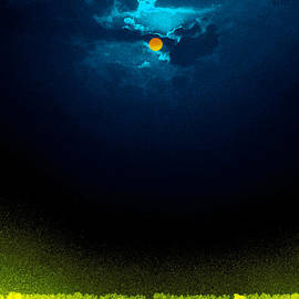 Bliss Of Art - Dark Night Glow