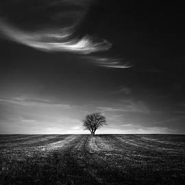 Dragos Ioneanu - Dark solitude