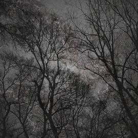 Brandi Elaine Crochet - Darkness