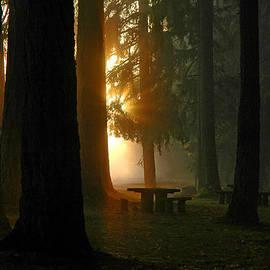 Nick  Boren - Dawn At McKercher Park