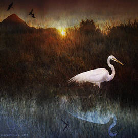 R christopher Vest - Dawn At The Meadow Marsh Egret