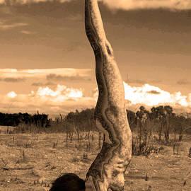 Deprise Brescia - Death of a Yogi