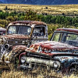 Ken Smith - Decades of Fords