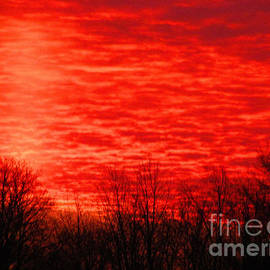Tina M Wenger - December 24 2014 sunset