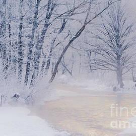 Alan L Graham - December Riverscape