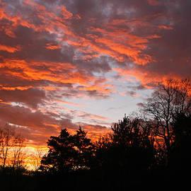 Bill Arthur - December Sunrise
