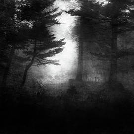 Theresa Tahara - Deep In The Dark Woods