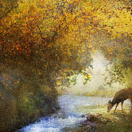 R christopher Vest - Deer By Woodland Brook