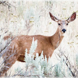 Athena Mckinzie - Deer In The Brush