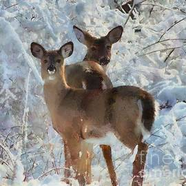 Elizabeth Coats - Deer in the snow