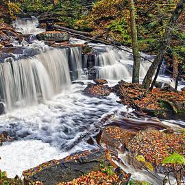 Marcia Colelli - Delaware Waterfall
