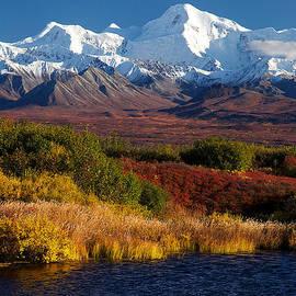 Ed Boudreau - Denali Autumn