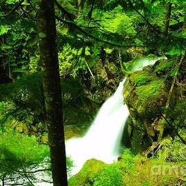 Jeff Swan - Denny Camp Falls