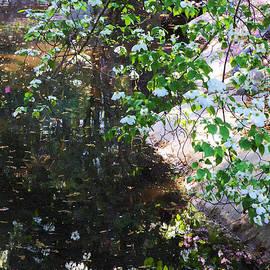 Viktor Savchenko - Descanso Garden