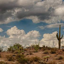 Saija  Lehtonen - Desert Clouds