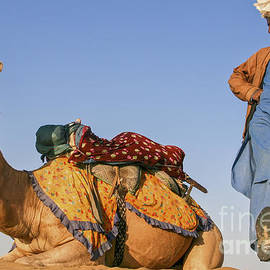 Jo Ann Tomaselli - Desert Dance Of The Dromedary and The Camel Driver