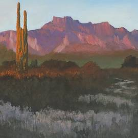 Bill Tomsa - Desert Evening Glow