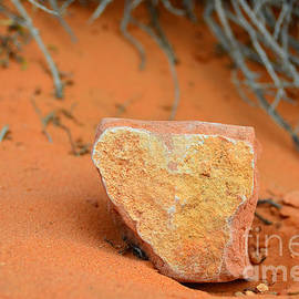 Debra Thompson - Desert Heart Rock