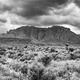 Charles McKelroy - Desert Land